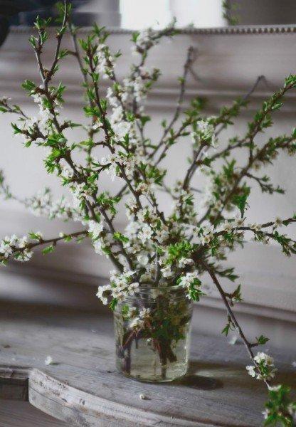 tavaszi ag5