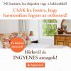 banner_hirlevel